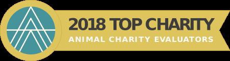 Animal Equality Top Charity 2017